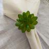 argola guardanapo suculenta verde amora casa casa cafe e mel 1