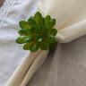 argola guardanapo suculenta verde amora casa casa cafe e mel 2