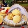cesto porta pao e bolo bambu com cobertura retatil natural casa cafe e mel